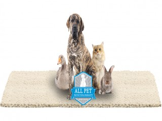 All Pet Protection and Warranty